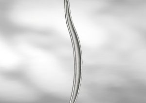 Артикул B5302