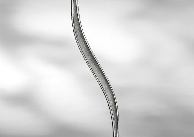 Артикул B5502